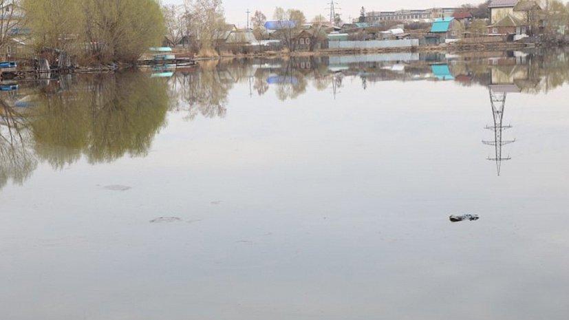 Масляная пленка затянула городской пруд в Кыштыме