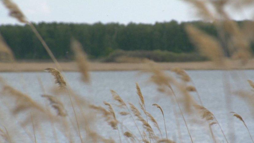 Застройка озера в Челябинской области стала причиной недовольства местных жителей
