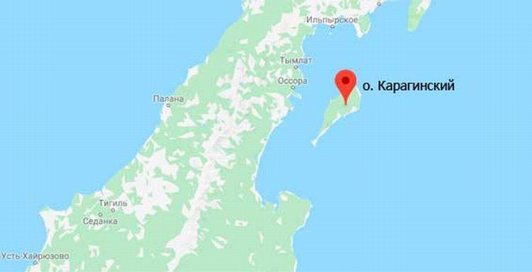 Трутнев поручил проверить, как остров около Камчатки сдали под охотугодья