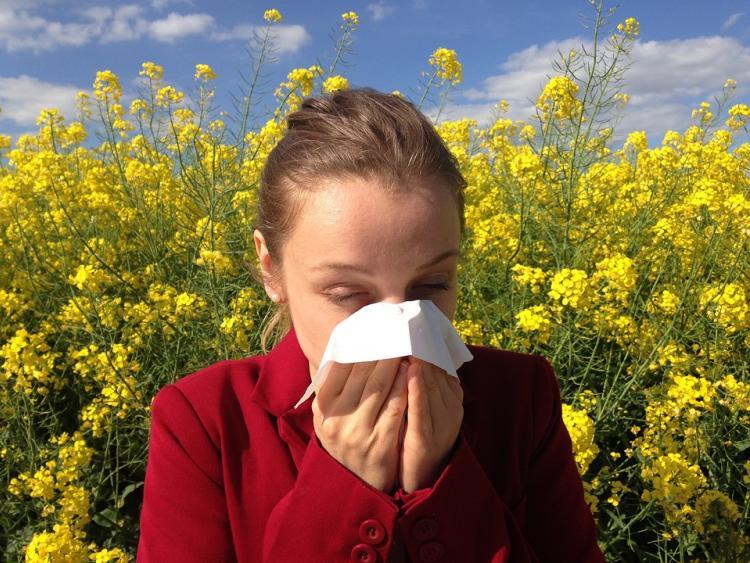 Аллергическая Россия: от чего страдают жители страны