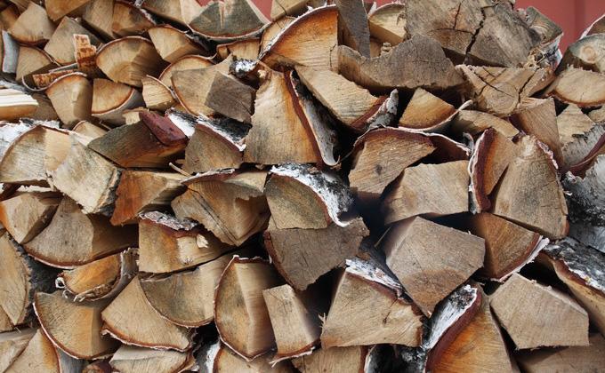 Против заготовки дров на комарах выступают кыштовчане