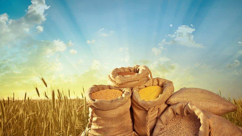 Южноуральский чиновник берёт взятки пшеницей