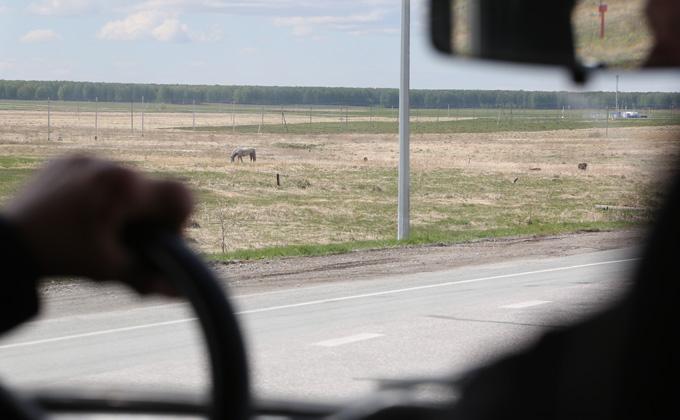 До 130 км/ч разрешат разгоняться водителям