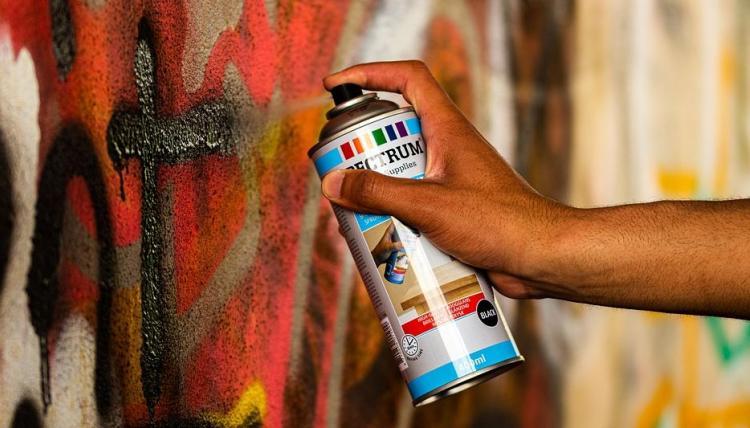 Художники из Нидерландов, Франции, Индии разрисуют стены Владивостока