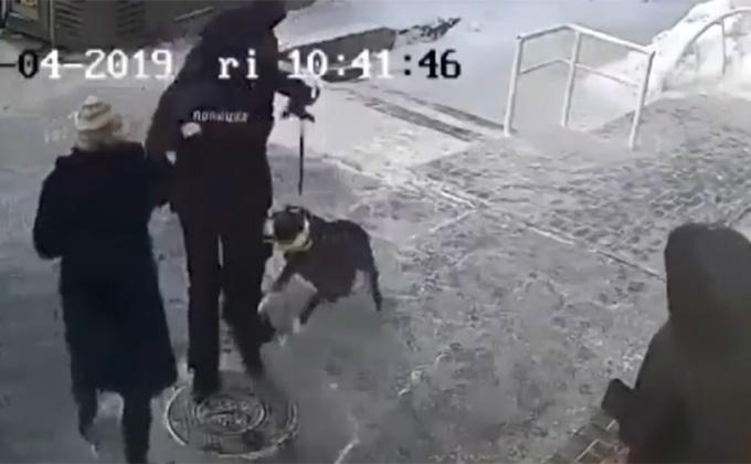 Условно посадили пару собачников за унижение полицейского