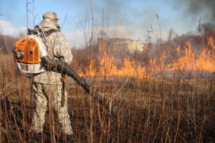 В Приморье снова могут возникнуть природные пожары