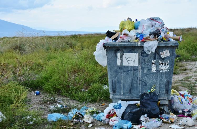 В Приморье - беда с раздельным сбором мусора