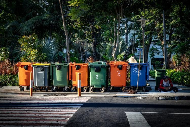 Приморцы готовы бороться за природу и сортировать мусор
