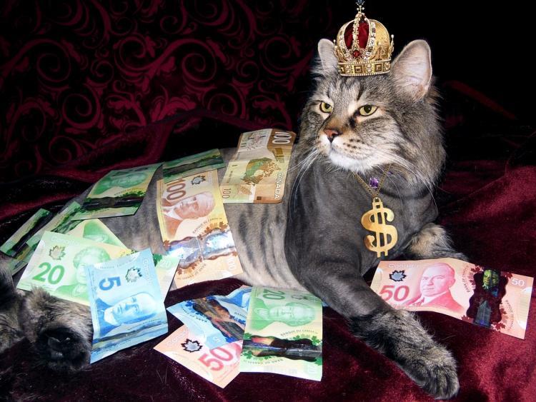 Когда люди смогут разбогатеть?