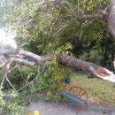 Последствия непогоды: сильный ветер и дожди принесли с собой разрушения и потопы