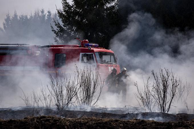 Лесные пожары в Сузуне: подозревают злоумышленников