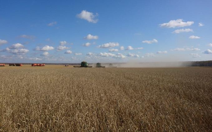 Губернатор поздравил аграриев Маслянинского и Сузунского районов с завершением уборки зерновых
