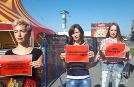 Флешмоб против шапито запустили новосибирские зоозащитники