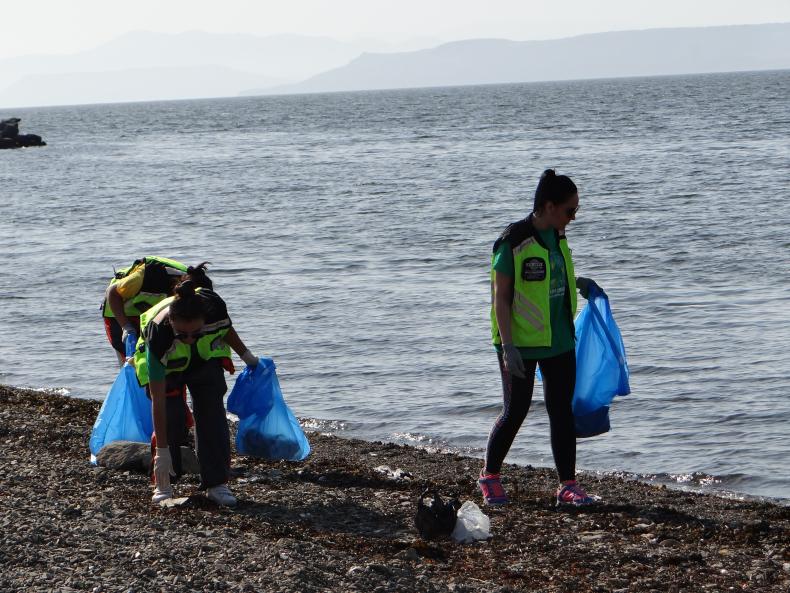 Чистый Владивосток: около 4 тонн отходов собрали в рамках морских субботников