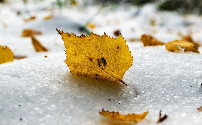 Погода 21-27 октября в Новосибирске: морозы и снегопады