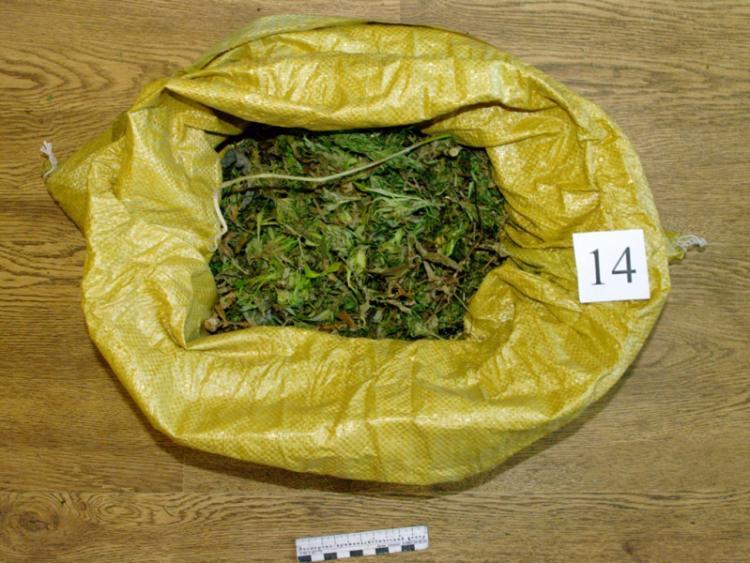 Пакеты с марихуаной обнаружили у мужчины в Приморье