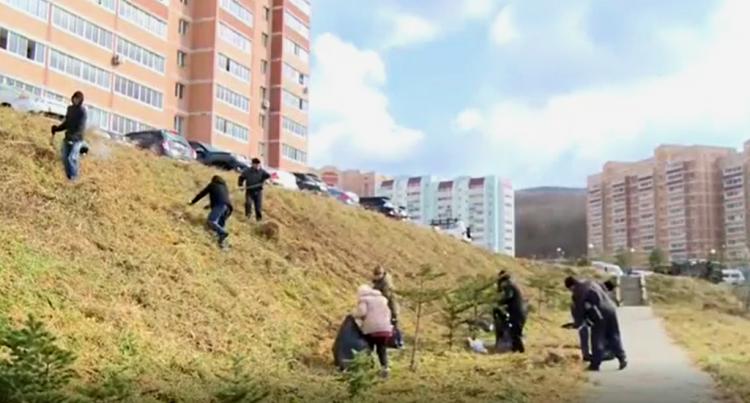 Жители Владивостока очистили придомовую территорию от мусора