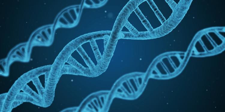 Может ли человечество избавиться от ВИЧ и гепатита B?