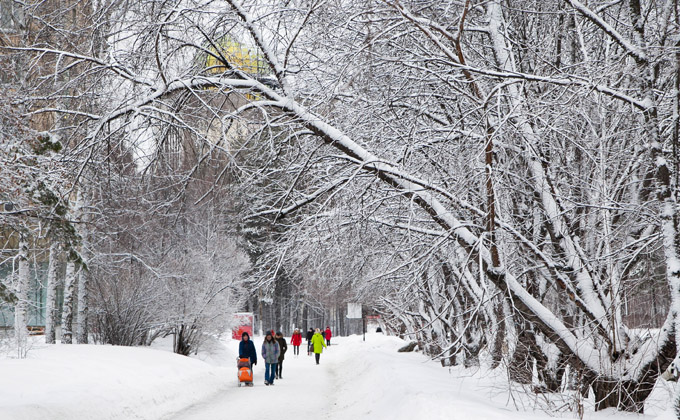 Погода 23 и 24 ноября в Новосибирске: тепло, но не очень