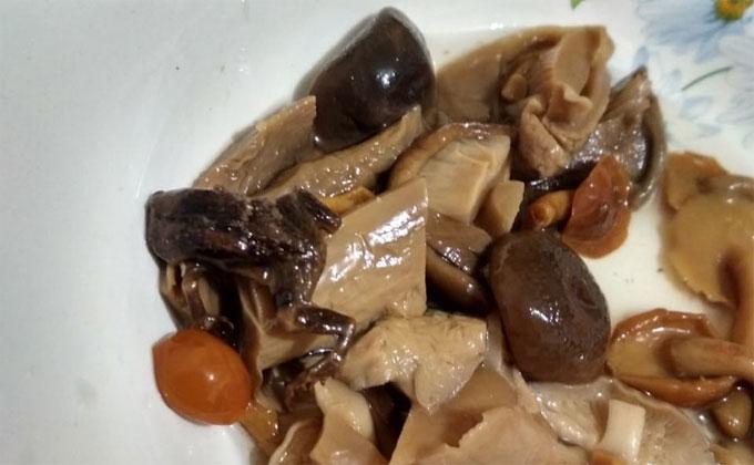 Маринованная лягушка в банке с грибами возмутила новосибирца