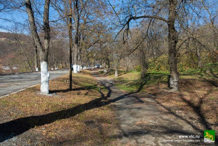 Работы по благоустройству парка Минного городка планируют начать весной
