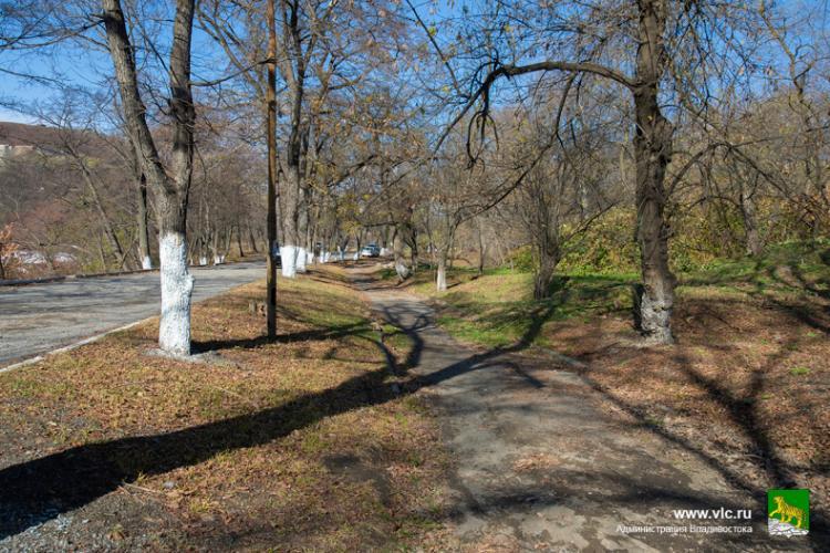 Специалисты рассчитывают объем работ в парке Минного городка