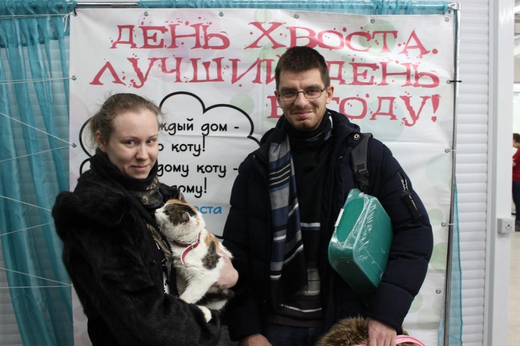 «День хвоста»: 12 кошек и собака нашли свой дом