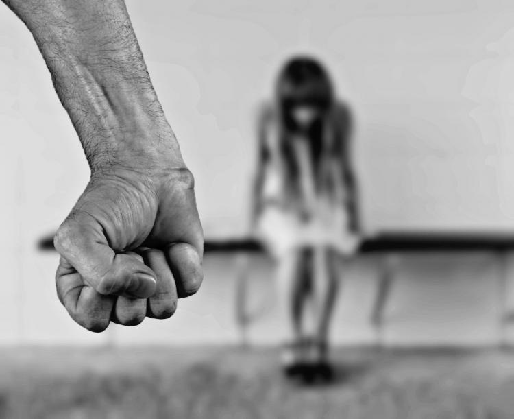 Задачи наказать нет: Cенатор - об истинном смысле закона о домашнем насилии