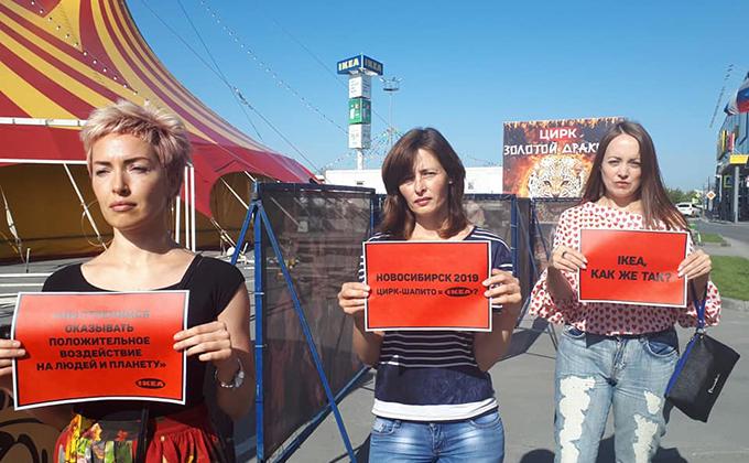 Цирк-шапито подал в суд на новосибирскую зоозащитницу