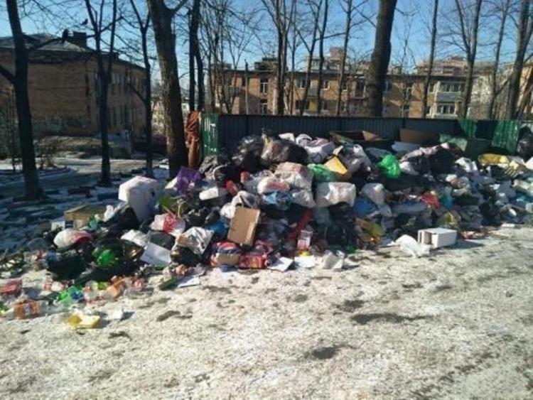 Владивостокских мусорщиков за коллапс накажут. Жёстко