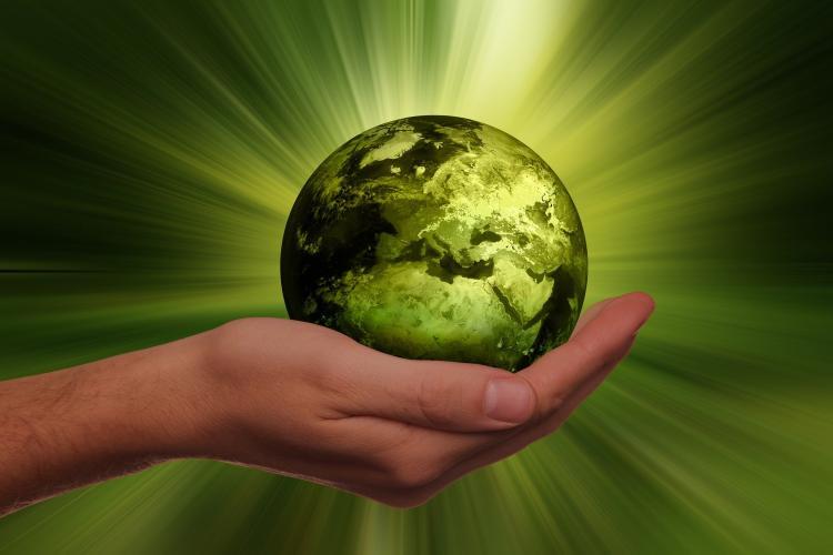 Ассоциация индустрии детских товаров: В России нужно ввести эко-стандарт