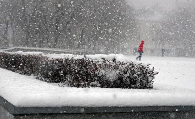 Новый циклон принесёт в Приморье снег