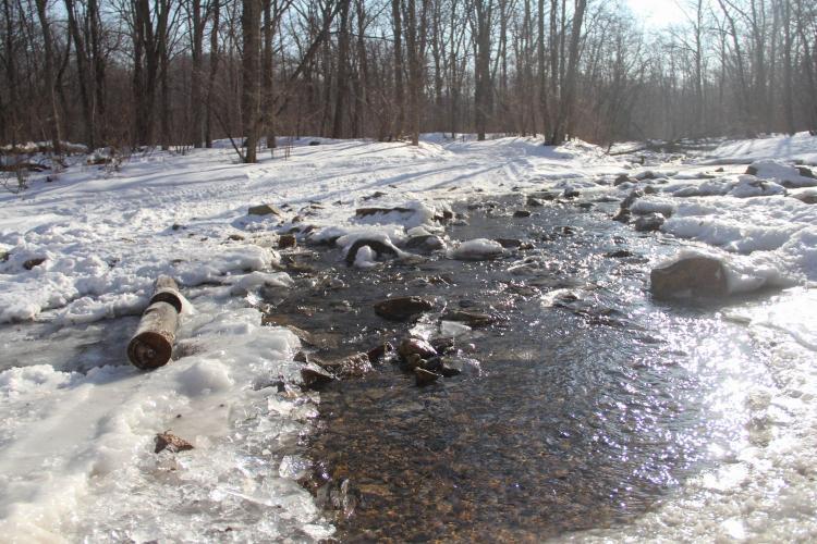 В Гидрометцентре объяснили аномально теплую погоду в России
