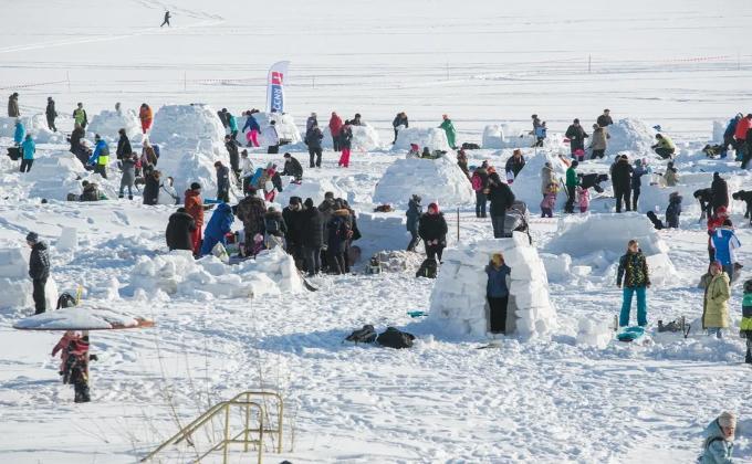 Рекордное количество иглу построили на берегу Обского моря новосибирцы