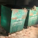 Расчлененную собаку выбросил в мусорку живодер в Новосибирске