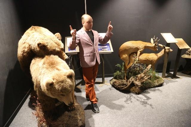 Животный секс показали новосибирцам в музее 14 февраля