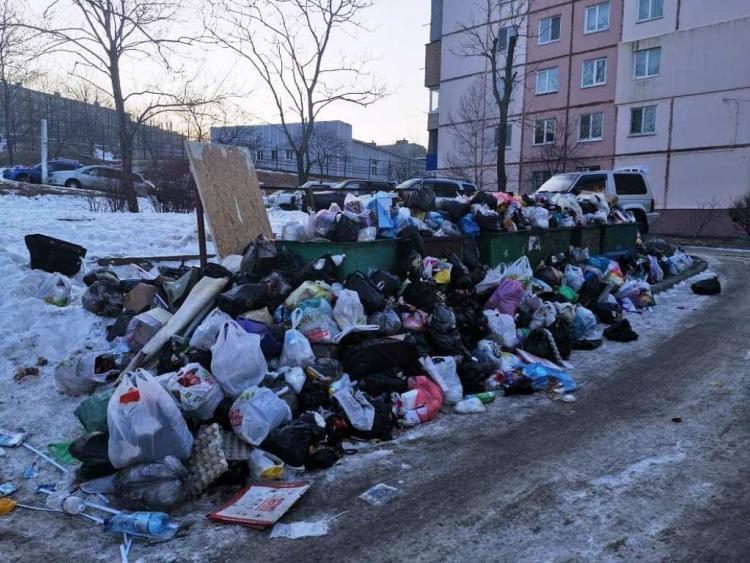 В Приморье за неубранный мусор после снегопада наказали 25 должностных лиц