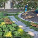 Цветочные часы пошли в центре Новосибирска