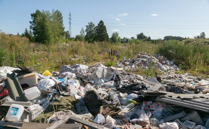 Эколог Багрянцев: Бердску нужен мусороперерабатывающий завод, а не свалка