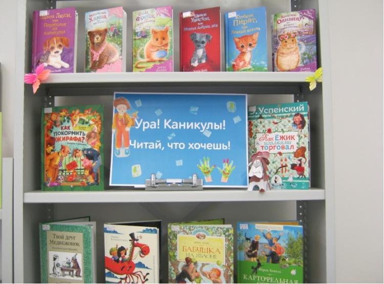 Названа дата открытия библиотек во Владивостоке