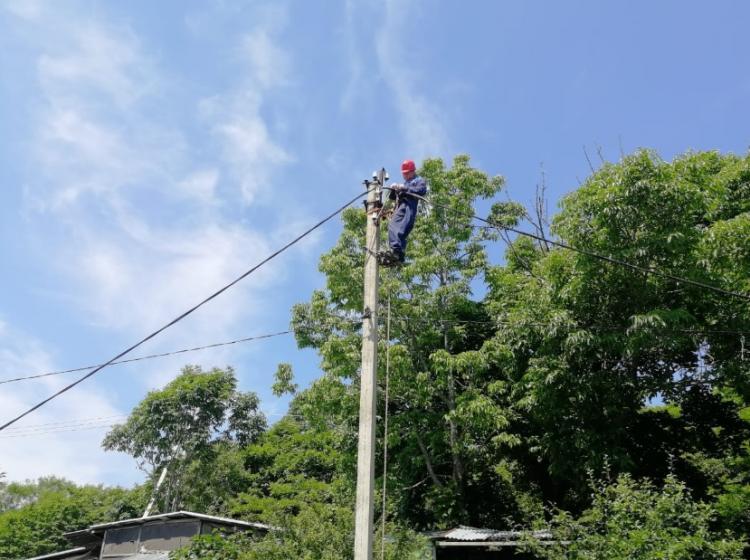 На острове Попова полностью заменили воздушную линию электропередачи