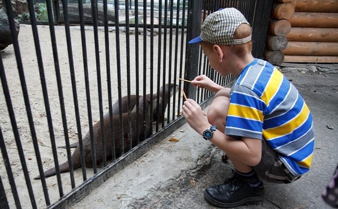 Новосибирский зоопарк стал работать на час меньше