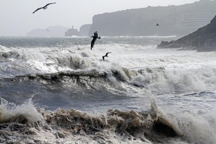 Интенсивные дожди и сильный ветер обрушатся на Приморье