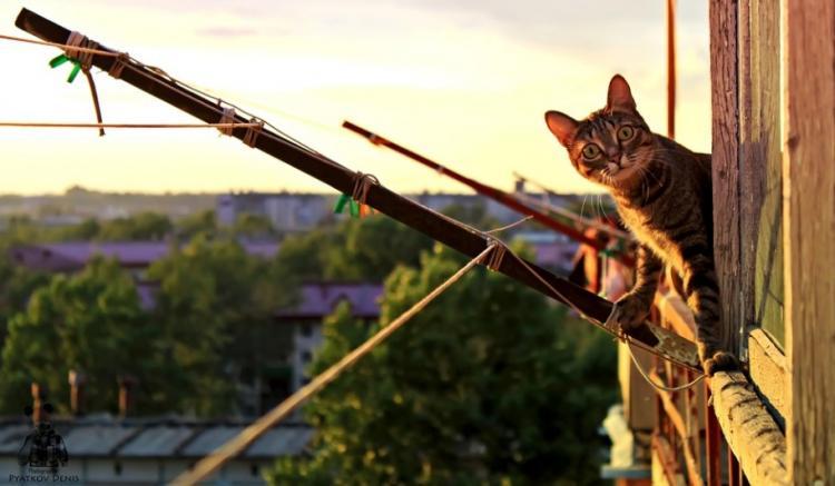 В жилом доме Владивостока обрушился балкон, на котором находился человек