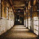«Всё загублено и брошено»: В Приморье есть место, напоминающее фильм ужасов