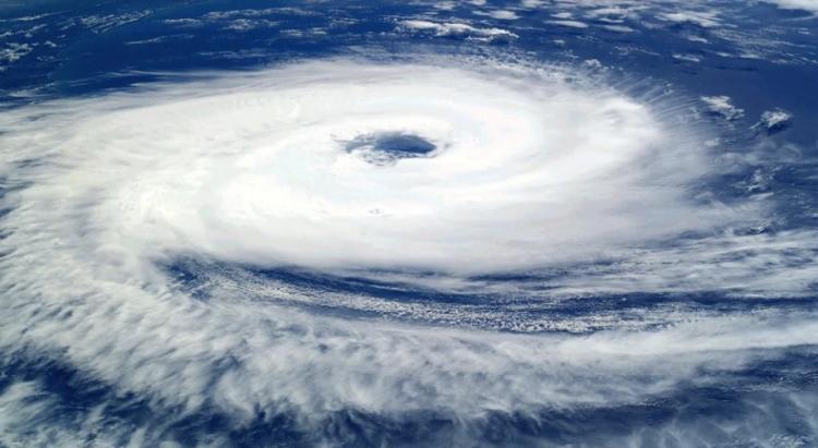Новый тропический шторм зародился в Тихом океане