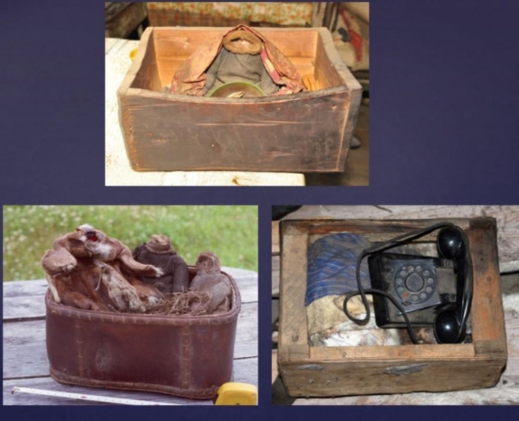 Артефакты древних шаманов привезли с Севера новосибирские ученые