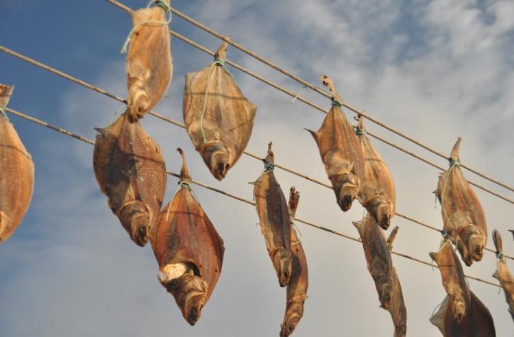 В Приморье не пустили солёно-сушёные морепродукты из Вьетнама
