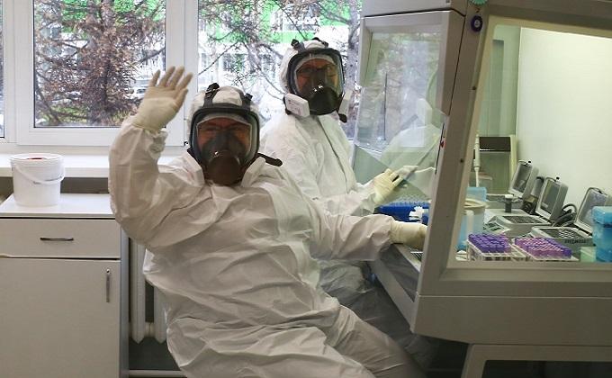 Как делают ПЦР-анализ на коронавирус: показываем все стадии