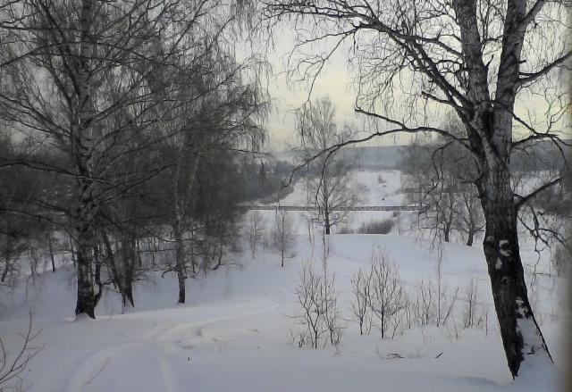 Карту экологических проблем Новосибирской области предложили создать депутаты Заксобрания